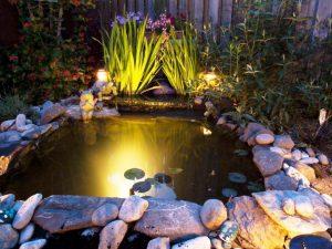 Onderwater verlichting; Overzicht van beste vijververlichting ...